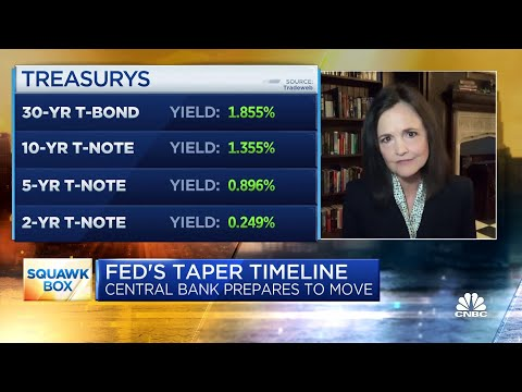 Former Fed nominee Judy Shelton on the Fed's taper timeline
