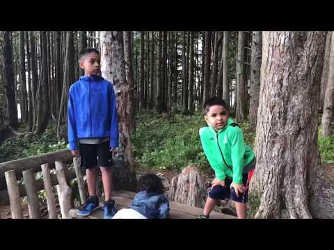 My Vlog Cape Flattery   Olympic National Park   Neah Bay WA