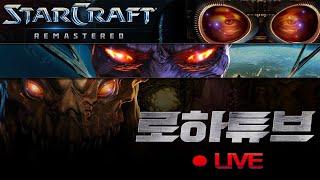 [ 로하튜브 LIVE ] 스타 팀플 헌터 스타크래프트 [ 2020-10-22(목) ] LoHaTube Sta…