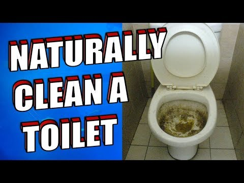 How To Clean a Toilet using Baking Soda and Vinegar