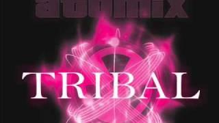 Musica tribal 2010