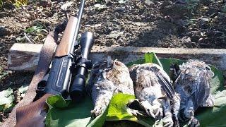 Охота на рябчика с мелкашкой видео
