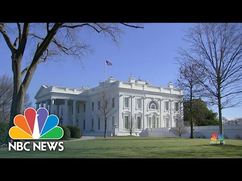 180 House Members Sign Onto Article of Impeachment | NBC Nightly News