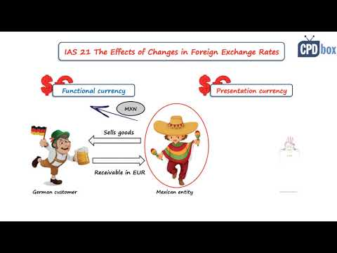 IAS 21 The Effects Of Changes In Foreign Exchange Rates - Summary 2021
