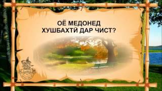 ОЁ МЕДОНЕД ХУШБАХТИ ДАР ЧИСТ? ( БАРОИ ЧАВОНОН)