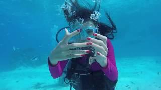 Rick & Jimlims 3 Month Honeymoon Adventure, NCS TULE - Fearless