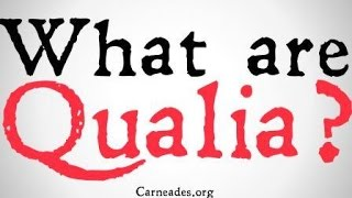 What are Qualia? (Philosophical Definitions)