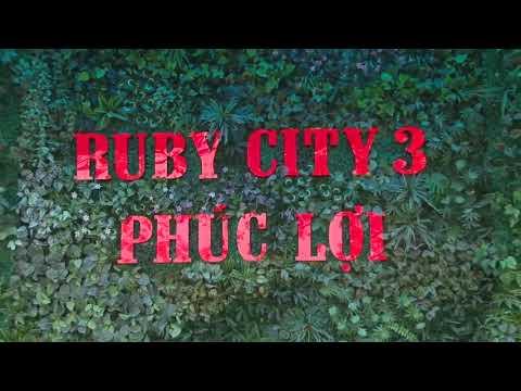 Giới thiệu tổng quan dự án chung cư Ruby City Ct3 Phúc Lợi