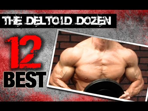 12 Best Shoulder Exercises (THE DELTOID DOZEN!!)