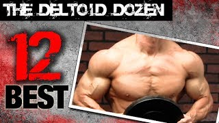 12 Best Shoulder Exercises (THE DELTOID DOZEN!!)