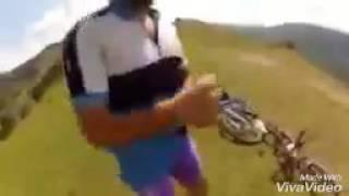 Агрессивные лошадки-кусачки