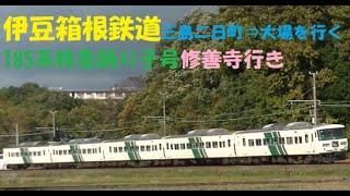 伊豆箱根鉄道乗り入れ185系特急踊り子号修善寺行き