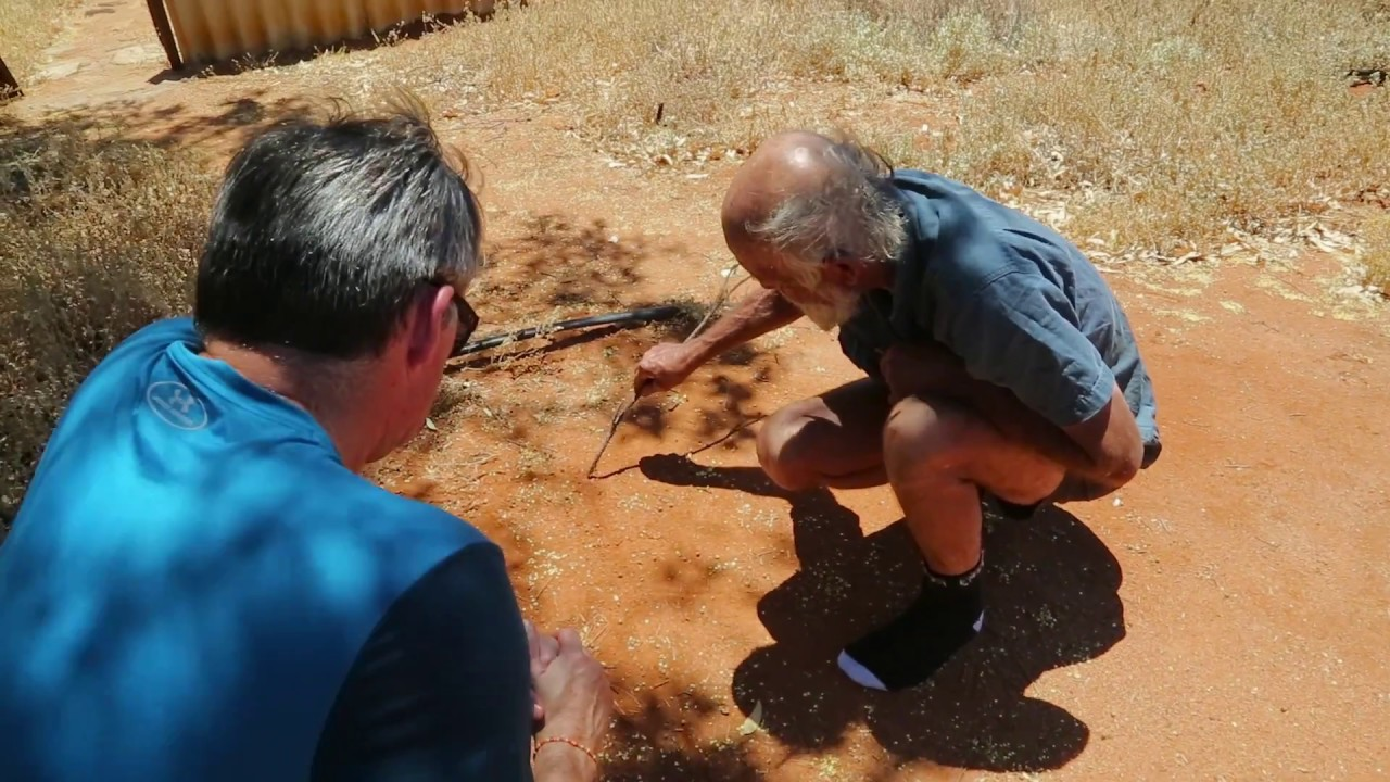 driving the rabbit proof fence