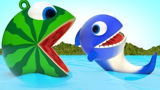 Watermelon Pacman meets a Baby Dolphin-PACMAN rolling arounds find surprise toys on the sea