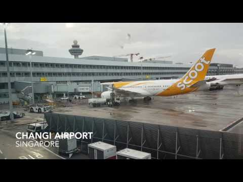 Singapore (SIN) to Chennai (MAA) flight Flyscoot/Tigerair  TZ502