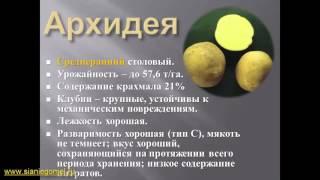 Выращивание картофеля(, 2016-03-09T08:08:36.000Z)