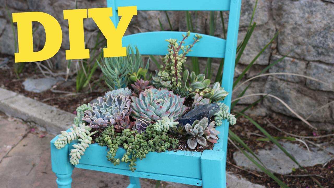 Succulent Chair | Succulent Planter DIY | DIY With Caitlin