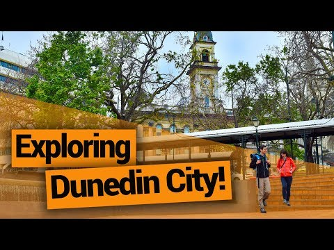 Exploring Dunedin City  –  New Zealand's Biggest Gap Year – Backpacker Guide New Zealand