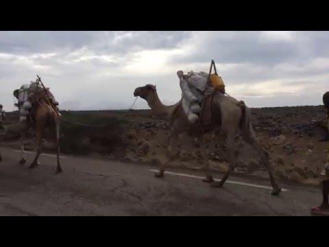 Views from Djibouti