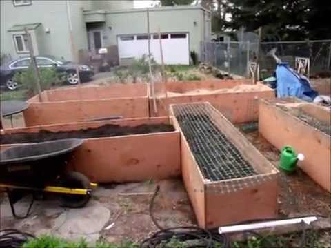 2015 Organic French Intensive Raised Bed Garden YouTube