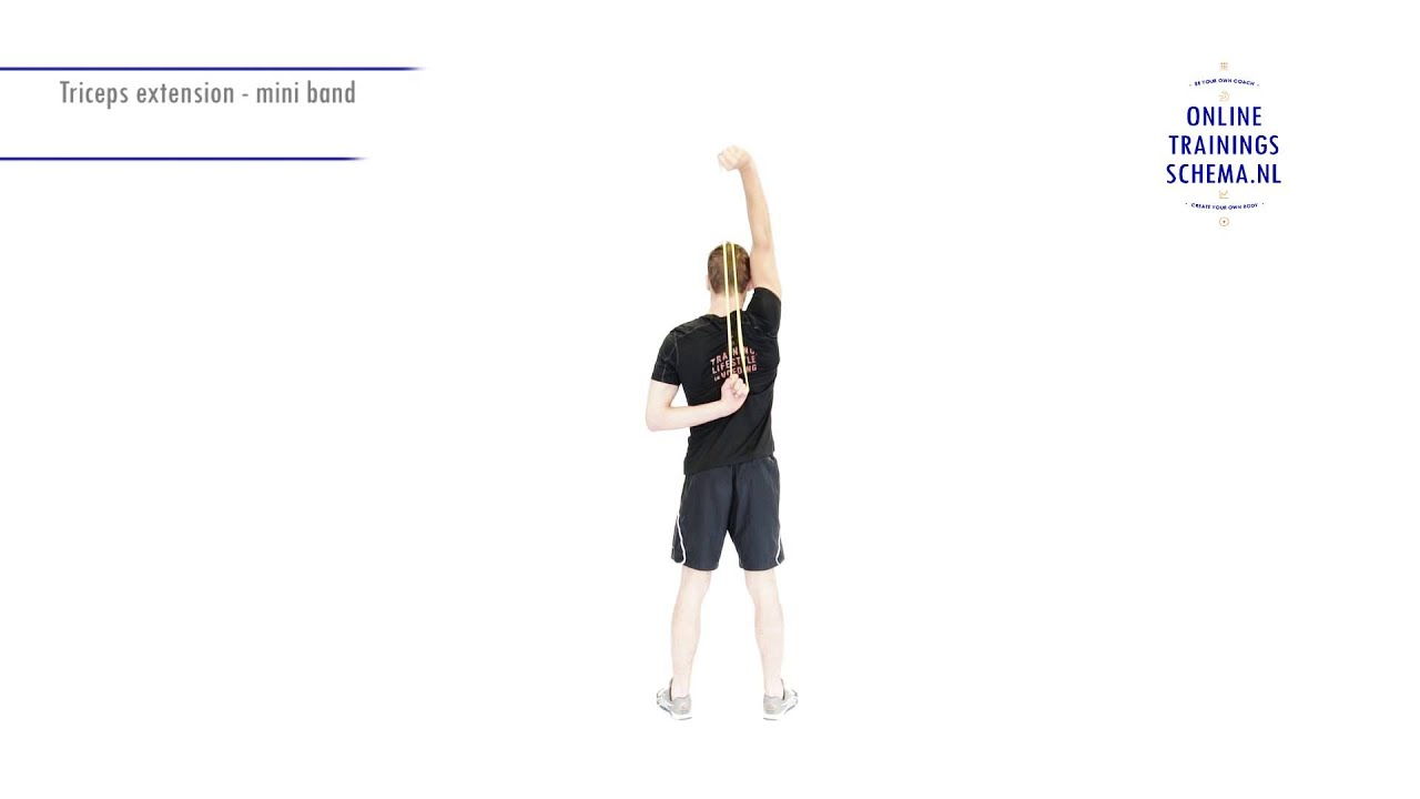 Triceps extension - Mini band - Onlinetrainingsschema.nl - YouTube