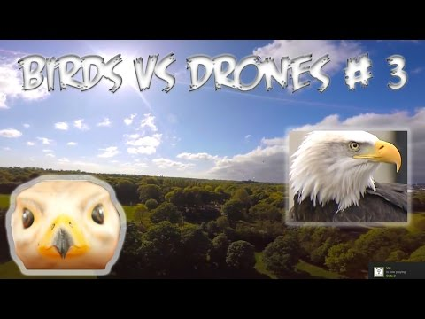 Top 5 Angry Birds vs Drones # 3