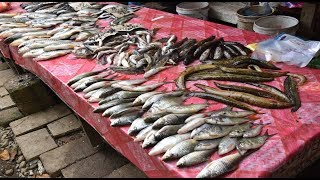 Vang Vieng Street Food - Vang Vieng Market, Laos 2018