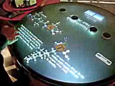 Interactive multi-touch table -- Bio Building Blocks