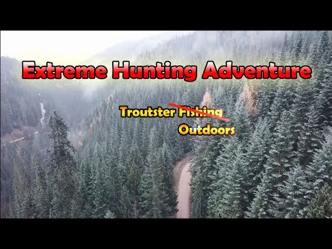 Hunting Adventure - Deer and Grouse Car Camping - How to Hunt Deer