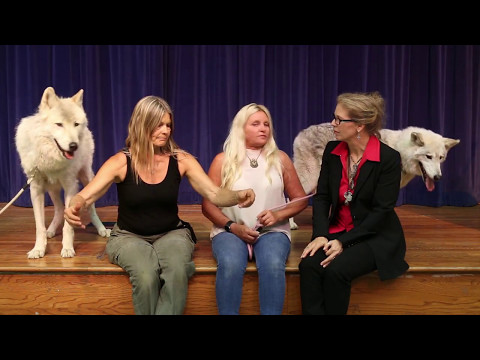 Berkeley Hall School's Conversations program about Wolves and Wolf Dogs