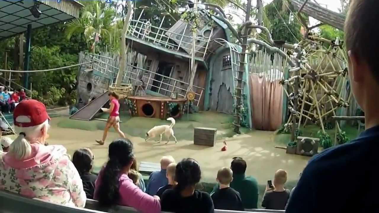 Critter Castaways Full Show Busch Gardens Tampa Bay