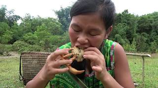 Survival Skills - Crab vs Human   Primitive Life Catch Big Crab By Hand and cooking crab delicious