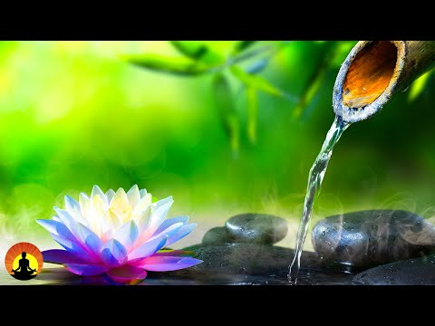 Relaxing Music, Meditation, Healing, Calming Music, Sleep, Yoga, Zen, Relax, Study, Spa, ☯3612