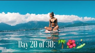 Hawaiian Adventure Vlog 2, Day 20 of 30: Stand up Paddle boarding