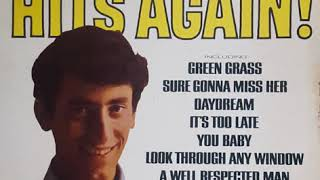 Gary Lewis & The Playboys - look through any window