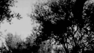 Magpie Video Presents : The Europeans -