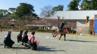 18th Odawara Horseback Archery Licensing Examination and Competition #1