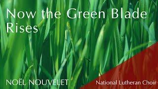 Now the Green Blade Rises - hymn | National Lutheran Choir & congregation