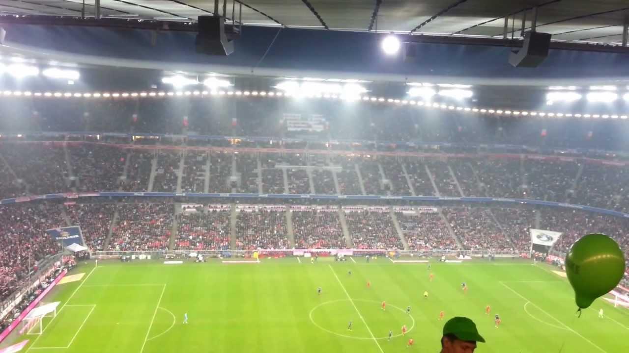 Bayern Hamburg Live