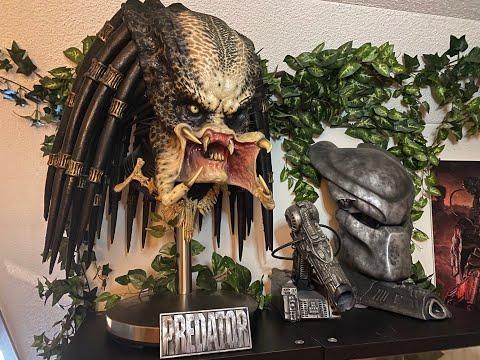 Predator Collection 2020