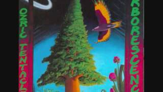 Download Ozric Tentacles - Al-Salooq MP3 song and Music Video