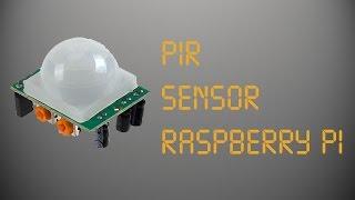 PIR Sensor (Raspberry Pi)