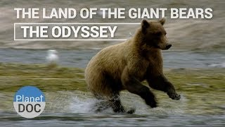 The Land of the Giant Bears - The Odyssey | Nature - Planet Doc Full Documentaries