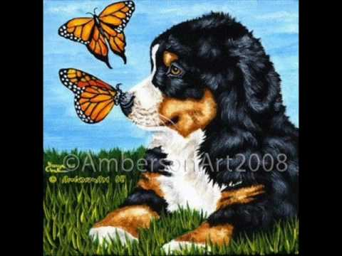 Heart - Dog and Butterfly