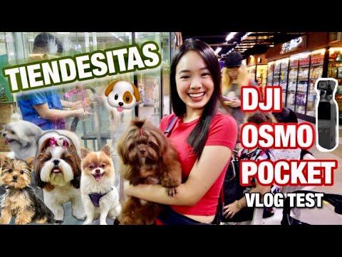 DOG GROOMING at TIENDESITAS (BEST PET SHOP)   Vlogging with DJI OSMO POCKET 🤔