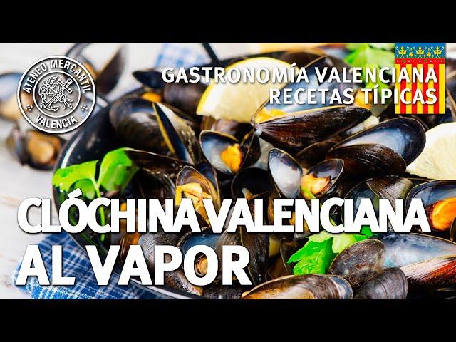 Clóchina Valenciana al vapor   Cocinero Pepe Amores