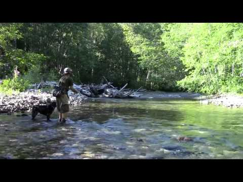 Fish Whispering Episode 409 The Cascades