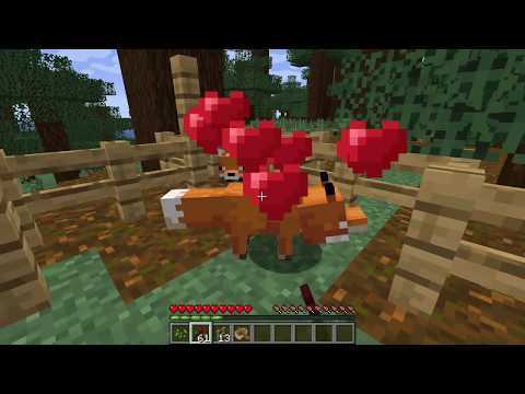 how-to-tame-a-fox-in-minecraft-1.16