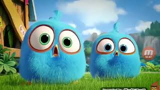 Angry Birds Blues Episode 12 The Cutest Weapon