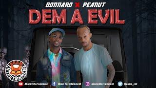 Donnaro, Peanut - Dem A Evil [Audio Visualizer]